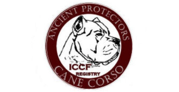 ICCF Decal Large