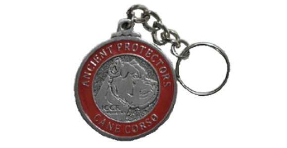 ICCF Keychain
