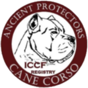 International Cane Corso Federation Registry, LLC